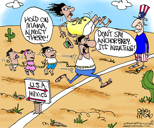 ANCHOR BABIES AND ILLEGALS AND IMMIGRATION
