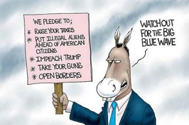 DEMOCRATS AND LIBERALS AND BLUE WAVE