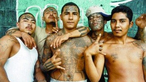 Huckabee Tweeted a Photo of Alleged MS-13 Gang Members